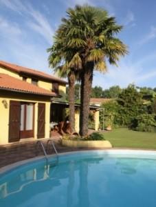 Immobilienmaker Costa Blanca Poolbeispiel 4